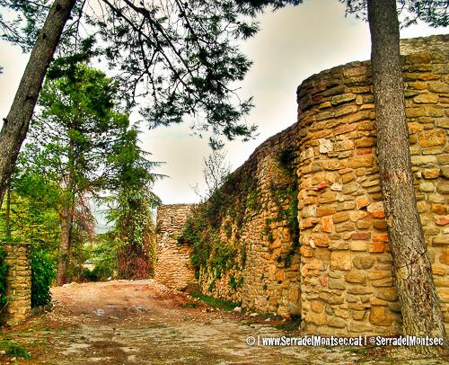 Part de la muralla de la cara nord del Castell d'Àger, La Noguera. Catalunya, Montsec d'Ares.