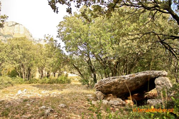 Dolmen de la Lloella del Llop I, Vilanova de Meià. La Noguera, Lleida. Catalunya. Montsec de Rúbies (o de Meià).