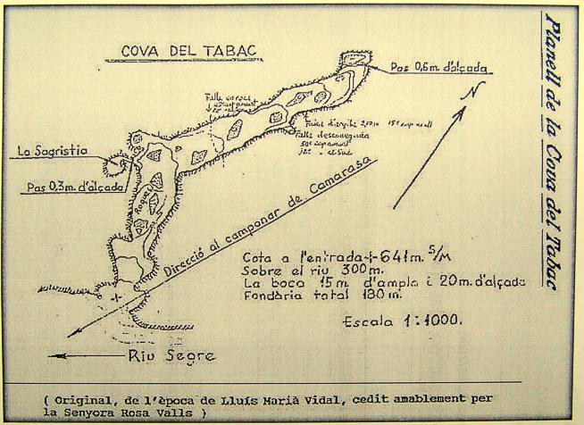 Planta de la Cova del Tabac, Camarasa. La Noguera, Lleida. Catalunya. Serra de Mont-Roig. Montsec.